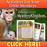 Download Monkey Kingdom Activities